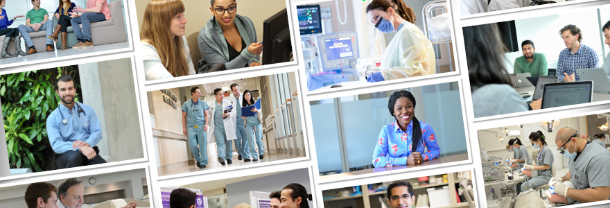 Collage of faculty, staff and students at Schulich Medicine & Dentistry