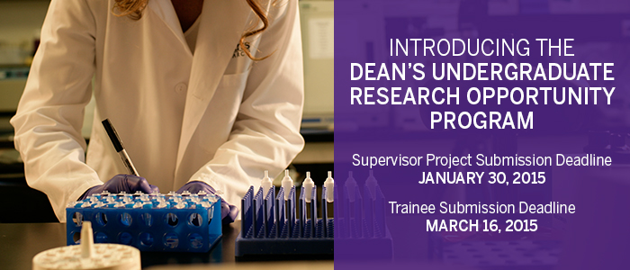 Dean's Undergraduate Research Opportunities Program (DUROP)