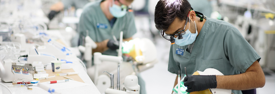 Transfer Students - Schulich Medicine & Dentistry Admissions