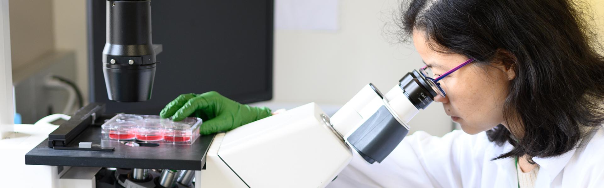 Ophthalmology - Western University